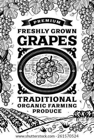 Retro grapes poster black and white - stock photo