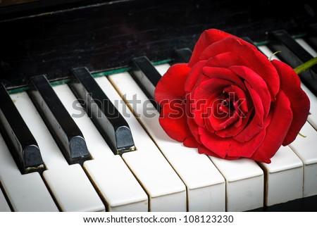 Retro piano keyboard and red rose closeup - stock photo