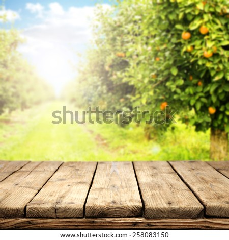 retro rustic table of free space and orange garden  - stock photo