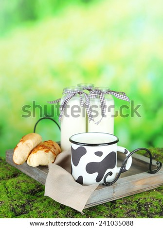 Retro still life with tasty rustic milk, on nature background - stock photo