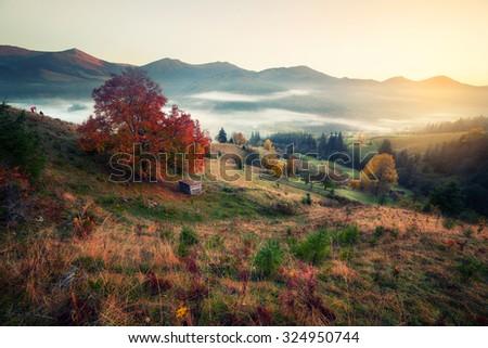 Retro style photo of mountain hills at misty autumn morning - stock photo