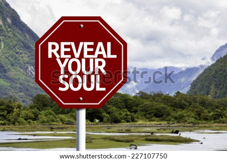 Reveal your Soul written on red road sign with landscape background - stock photo