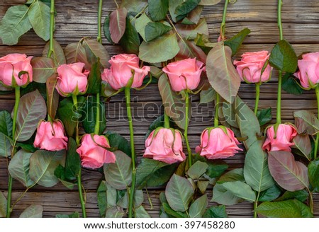 Reverse facing rows of neatly arranged pink stemmed roses over wooden table background - stock photo