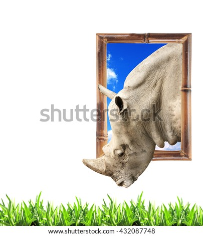 Rhinoceros in bamboo frame with 3d effect and green grass. Isolated on white background - stock photo