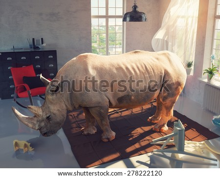 rhinoceros in the room looking at the wooden toy. Photo combination concept - stock photo
