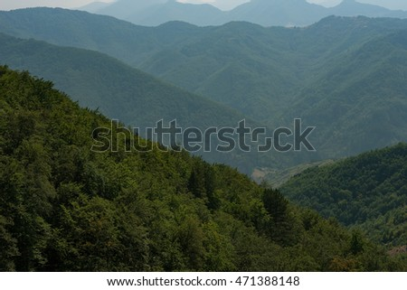 Rhodope mountains in the summer, Bulgaria