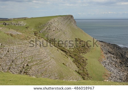 Rhossili with sheep grazing and rock strata. Gower Peninsular, Wales, UK