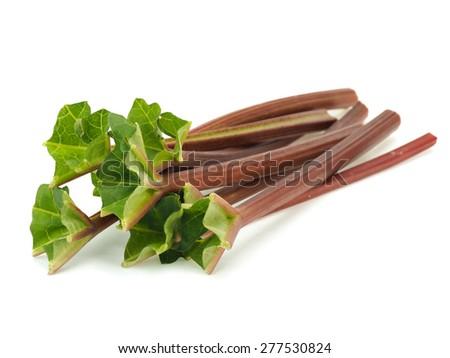 Rhubarb stalks on a white background   - stock photo