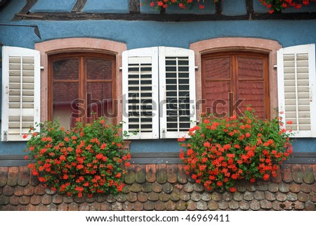Ribeauville (Bas-Rhin, Alsace, France) - Exterior of blue half-timbered house with white shutters and red flowers
