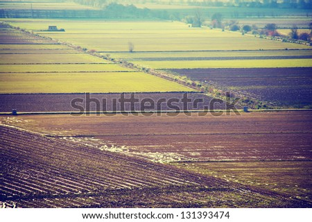 Rice, agricultural fields in winter in Portugal, Europe - stock photo