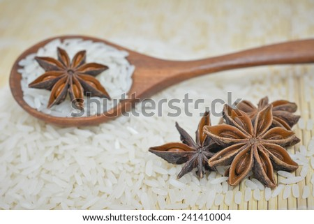 Rice and Spices - stock photo