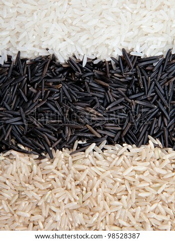 Rice background three kind