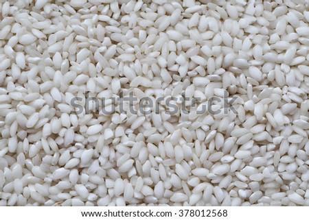 Rice close up white background - stock photo