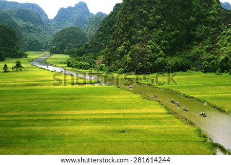 Rice field and river, Tamcoc,NinhBinh, Vietnam landscapes