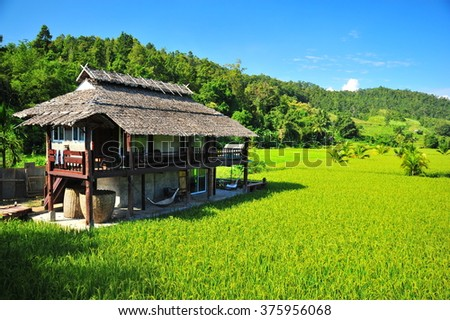 Rice Field and Small Village in Thailand - stock photo