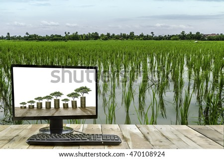 rice field and technology