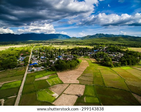Rice field from top view northern Lampang, Thailand