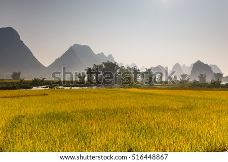 Rice field in Cao Bang province. Caobang is North East province of Vietnam near China