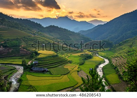 Rice field on Terraces panoramic hillside with rice farming on mountains beautiful shape in nature. It named in top ten world's most beautiful landscapes in Lapantan, MuCangChai, Yen Bai, Vietnam