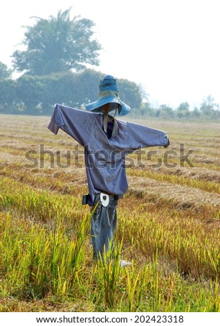 rice field (scarecrow)
