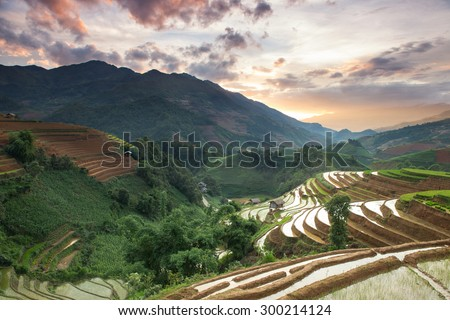 Rice field terraces view on the top mountain Mu Cang Chai , Vietnam.