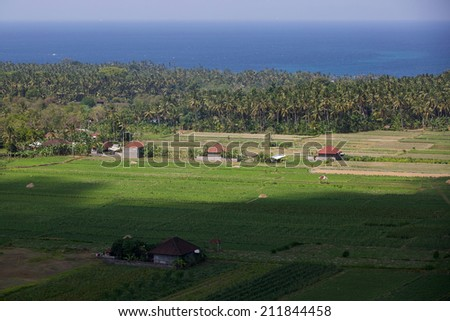 Rice fields in Amed, Bali, Indonesia - stock photo