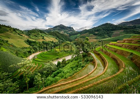 Rice fields on terrace of Mu Cang Chai, Yen Bai, Vietnam