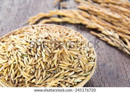 Rice grain - stock photo