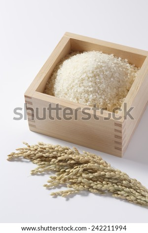 Rice image - stock photo