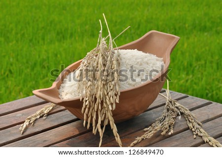 rice in bowl and paddy rice on wood table in the green rice field background; three status of rice - stock photo