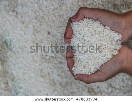 Rice is a grain of rice plants in the genus found in Asia. Scientific name: Oryza sativa, rice cereal, which is a major consumer of the world. Especially in Asia.