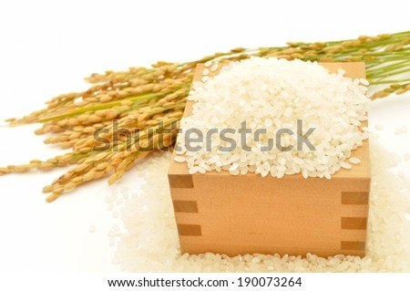 Rice on a box and some form of grain. - stock photo