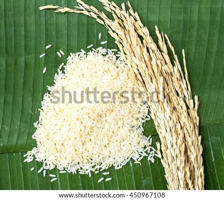 Rice on banana leaf  - stock photo