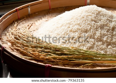 rice on threshing basket - stock photo