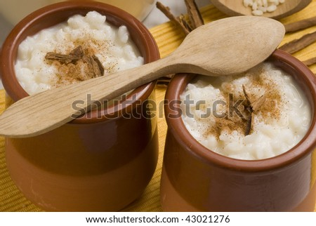 Rice pudding in a ceramic bowl with lemon and grated cinnamon. Selective focus. Arroz con leche.