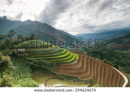 Rice terraces field in Raining season. - stock photo