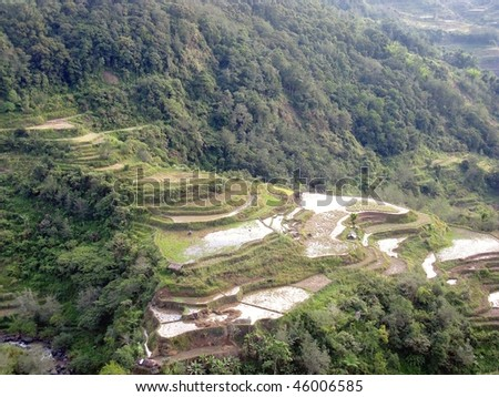 Rice terraces in northern Luzon in the Philippines - stock photo