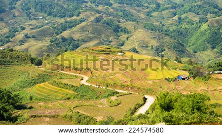Rice terraces on the mountain hills in the Northern Vietnam