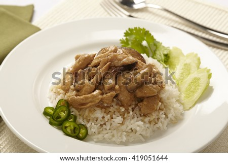rice with chicken in gravy suace - stock photo