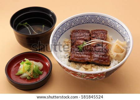 Rice with grilled eel, Japanese cuisine