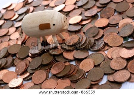 rich pig - stock photo