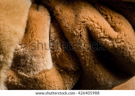 Rich soft brown fur close up - stock photo