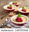 Ricotta Cheese Tartlets with raspberries - stock photo