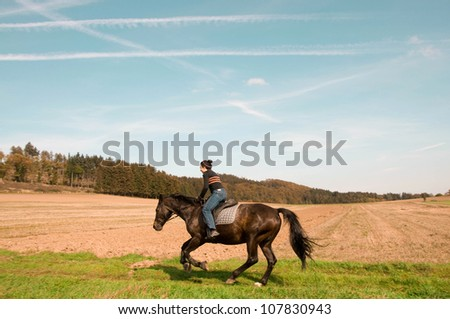 Rider gallops across the field. Hanoverian