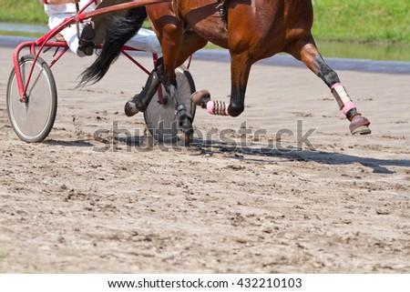 Rider on a horse race on hippodrome