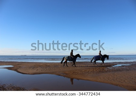 Riders on horses galloping along the shoreline of the ocean. - stock photo