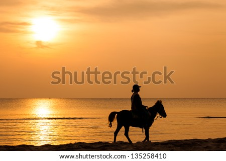 Riding a horse on the background of the sea in sunlight - stock photo