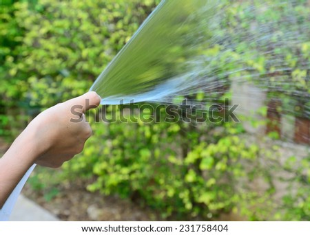 right female hand is watering the plants in  garden by rubber tube - stock photo