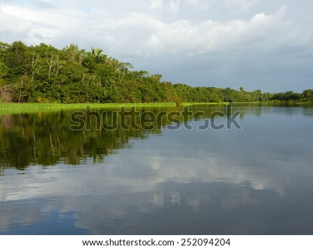Rio MAMURI, Amazon River tributary, Amazonas, Brazil - stock photo