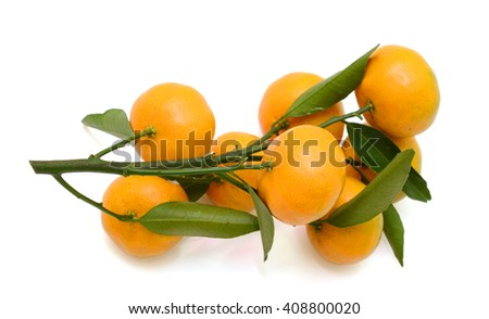 rip tangerine fruits with leaves isolated on white background - stock photo